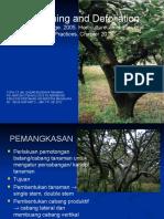 Dbt 13 - Pruning & Defoliation