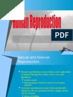 humanreproduction-130528213825-phpapp02