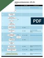 Processus de Formation CPL IR (Avions Et Hélicoptères)