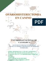 OVARIOHISTERECTOMIA.pptx