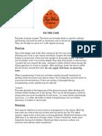 fig_information.pdf