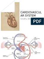 k1 - Anatomy of Cardiovascular System