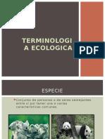 TERMINOLOGIA ECOLOGICA
