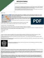 Informe Completo de Mesopotamia