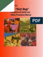 20080129025413.OHSFirstStep.pdf
