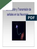 neuronas transmisoras