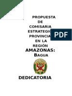 Plan de Trabajo Cs-pnp-bagua 2016