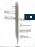 Petit Piment 20048
