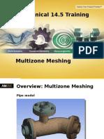 Multizone Meshing