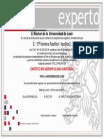tp_experto.pdf