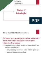 1.1 Details of Workshop Version PtBr 2010 July