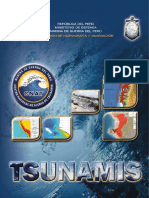 revista_tsunami2014.pdf
