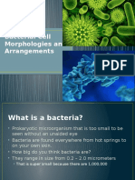 bacterial cell morphologies pptm