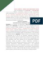 Acta Constitutiva Modelo, C.a.