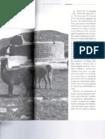 La Dominación Inca. Tambos,Caminos y Santuarios. L. R. González. 2000