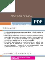 Patologia Cervical
