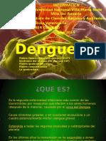 Informatica Dengue