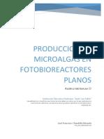 microalga.pdf