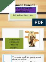 Exp-funciones Del Area de Auditoria22