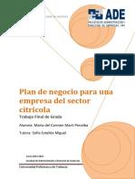 Martí - Plan de Negocio Para Una Empresa Del Sector Citrícola