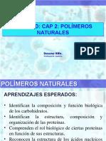 polimeros-naturales (proteinas)