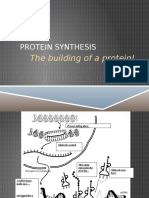 protein synthesis notes and diagram