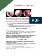 2- Patologia de La Membrana Timpanica