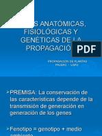 Bases anátomicas,fisiológicas y genéticas de la propagación