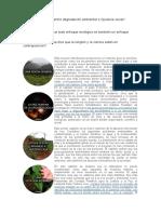 Cuál Es La Relación Entre Degradación Ambiental e Injusticia Social