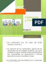 Carbonatos y Piretroides, Ppt Final