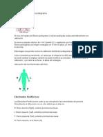 Calibración-del-Electrocardiograma.docx