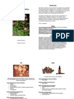 Plantas Curativas Final Draft June 10