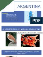 Grp04 Argentina