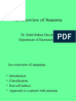 An Introduction to Anaemia