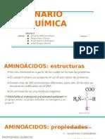 AMINOACIDOS - Seminario Bioquimica