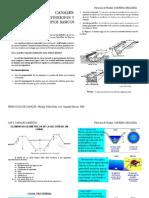 youblisher.com-543024-canales_abiertos_mecanica_de_fluidos.pdf