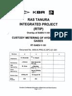 RT-SAES-Y-101.pdf