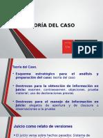 Teoría Del Caso Chile