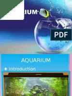 aquarium-151005122129-lva1-app6891