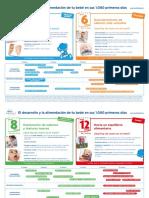 el_desarrollo_y_la_alimentacion_d_etu_bebe.pdf