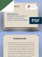 Expectativas y propósitos (1) (2).pptx
