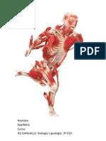 3eso_biologia_ejercicios.pdf