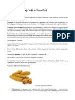 Curcuma.pdf
