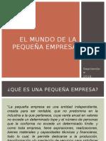 El Mundo de La Pequeña Empresa y Formación de Una Empresa EXP.