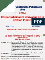 Responsabilidades Derivadas de La Gestion Publica