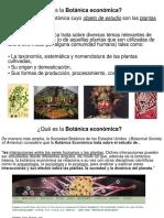TericaBotnicaeconmica.pdf