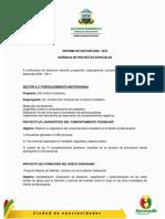 Informe de Gestión 2008-2010. Gerencia de Proyectos Especiales (Alcaldía Distrital de Barranquilla)