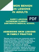 Common Benign Skin Lesions-dms2