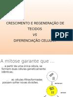5 Diferenciao Celular