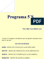 Apresentação Programa 5S